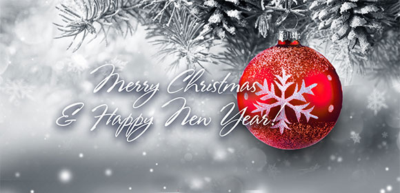 Merry Christmas and Happy New Year!
